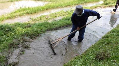 田植え前の大事な農作業「代掻き」